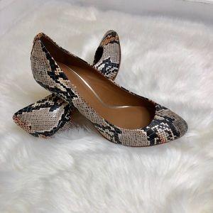 Coach python heels size 8.5 B